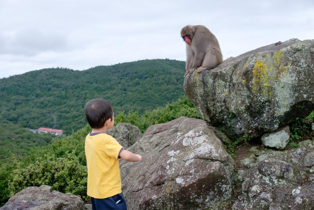 お猿の説法を聞く息子